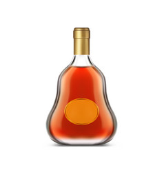 Bottle cognac with clear label or dark brandy vector