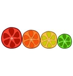 Doodle citrus slices vector