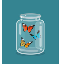 jar and beautiful butterflies inside vector image