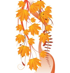 Maple leaves ornament vector