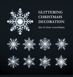 silver snowflake set christmas decoration element vector image