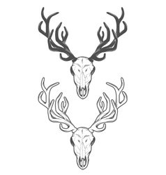 the skull a deer the two versions vector image
