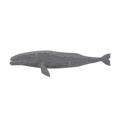Whale gray iconcartoon icon vector