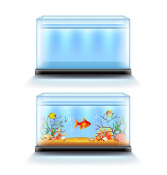 aquarium with fish and blank isolated on white vector image