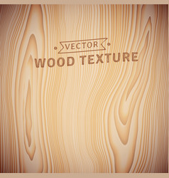 background texture realistic natural wood vector image