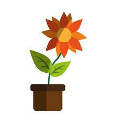 Flower in pot icon image vector