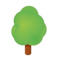 Isometric tree icon vector image