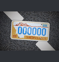 montana auto license plate on the asphalt vector image