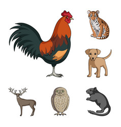 realistic animals cartoon icons in set collection vector image
