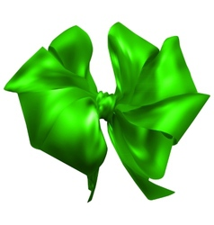 beautiful silk bow vector image