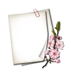 Spring card vector