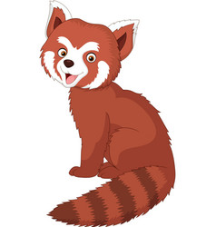 cartoon red panda vector image