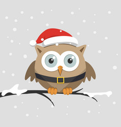 christmas male owl with santa claus hat vector image