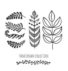 Ethnic collection with stylized doodle leaves vector