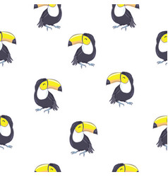 Summer background toucans summer print paper or vector