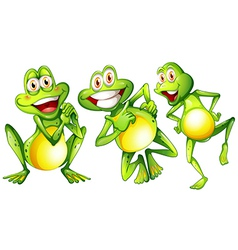 Three smiling frogs vector