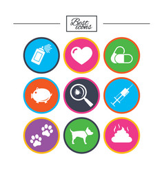 Veterinary pets icons dog paws syringe signs vector