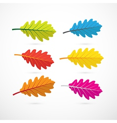 Colorful Oak Leaves Isolated on White Background vector image