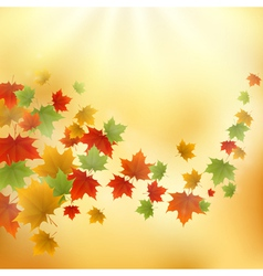 Gold autumn background vector image