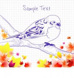 bird doodle vector image
