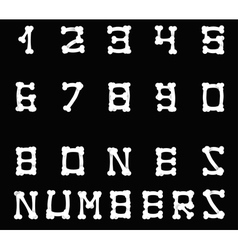 Bones numbers black vector image