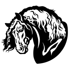 heavy horse head vector image