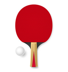 Tennis racket with white ball on white background vector