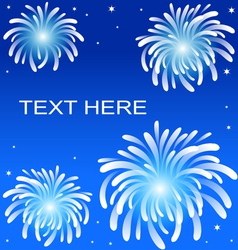 Fire work on blue background vector image vector image