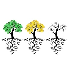 tree root set vector image vector image