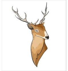 Hand drawn cartoon deer header vector image
