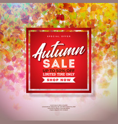 autumn sale design with colorful falling leaves vector image