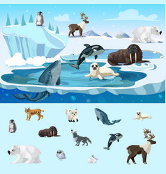 Colorful arctic wildlife concept vector