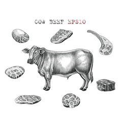 cow beef set hand draw vintage engraving style vector image