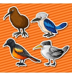 Different kind of birds vector image