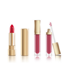 beautiful red cosmetic lipstick and liquid lip vector image