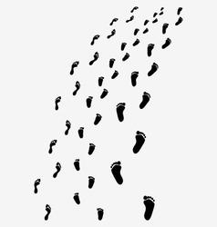 Black footprints vector image