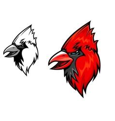 Cardinal birds vector image