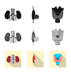 Design of body and human logo collection vector