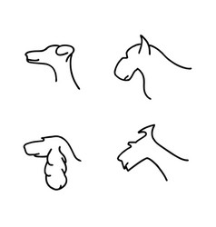 dogs breeds line vector image