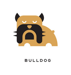 Flat of bulldog with wrinkled vector