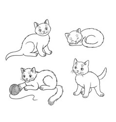 four different kittens in outlines vector image