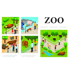 Isometric zoo colorful composition vector
