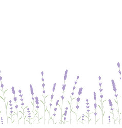 Lavender card border vintage label with vector