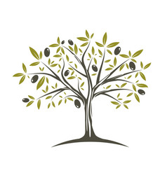 Single olive tree vector