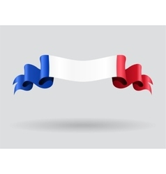 French wavy flag vector image