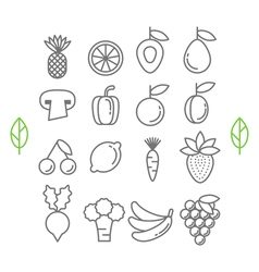 Set of healthy eco fruit and vegetables icons vector image