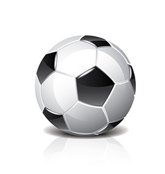 object soccer ball vector image