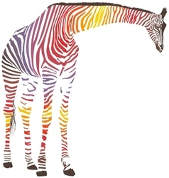 Abstract giraffe with zebra skin vector image vector image
