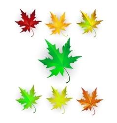 Autumn Maple Leaves Set vector image