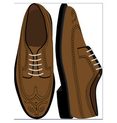 Brown brogue shoe vector